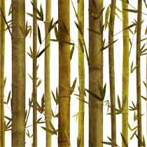 Bamboo%20Barriers.jpg