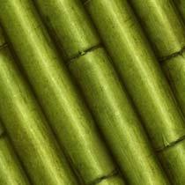 Bamboo%20Green.jpg