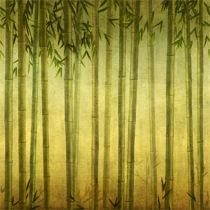 Bamboo%20Groove.jpg