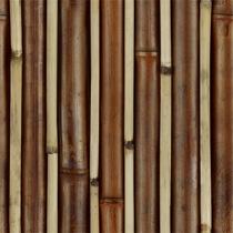 Bamboo%20Prison.jpg