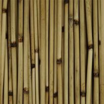 Bamboo%20Sticks.jpg