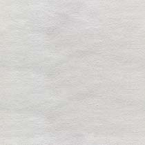 Blank%20Canvas.jpg
