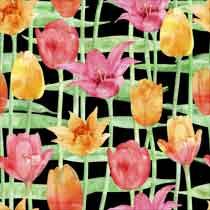 Blooming%20Stages.jpg