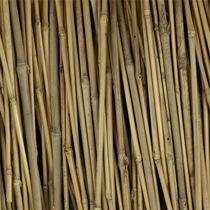 Broomstick%20Handles.jpg