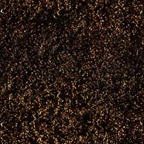 Brown%20Carpet.jpg